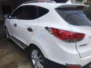 Cần bán xe Hyundai Tucson đời 2010, màu trắng, nhập khẩu   giá 538 triệu tại Gia Lai