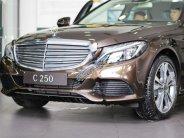 Bán Mercedes C250 2018, màu nâu, xe đủ màu, giao ngay giá 1 tỷ 729 tr tại Tp.HCM