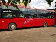 Xe giường nằm ThacoHyundai 40 giường máy Hyundai D6CB 410 PS giá 1 tỷ 380 tr tại Tp.HCM
