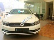 Bán Volkswagen Passat, màu trắng, xe Đức nhập khẩu, trả trước 500 triệu giá 1 tỷ 420 tr tại Lâm Đồng