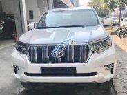 Cần bán Toyota Land Cruiser VX 2.7L Prado sản xuất năm 2018, giao ngay giá 2 tỷ 348 tr tại Tp.HCM