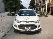 Bán xe Ford Ecosport giá 495 tỷ tại Hà Nội