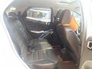 Cần bán xe Ford EcoSport Titanium năm 2015, màu bạc   giá 495 triệu tại Hà Giang
