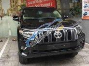 Bán Toyota Prado VX sản xuất 2005, giao ngay giá tốt giá 2 tỷ 599 tr tại Tp.HCM