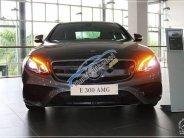 Bán Mercedes E300 AMG đời 2018, nhập khẩu nguyên chiếc giá 2 tỷ 769 tr tại Tp.HCM
