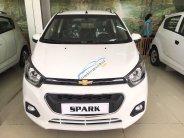 Bán Chevrolet Spark van 2018, trả trước 40 triệu nhận xe ngay, hỗ trợ vay cao 90%, gọi Trân 0937849694 giá 299 triệu tại Tp.HCM