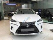 Bán xe Lexus NX 300 năm 2018, màu trắng, xe nhập giá 2 tỷ 510 tr tại Tp.HCM
