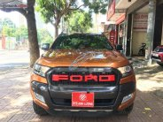 Bán Ford Ranger Wildtrak 3.2 4x4 AT năm sản xuất 2016, nhập khẩu   giá 790 triệu tại Đắk Lắk