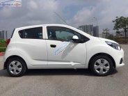 Bán xe Chevrolet Spark Duo Van 1.2 MT năm 2018, màu trắng  giá 259 triệu tại Hà Nội