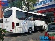 Giá xe Global 29 34 Tracomeco Weichai, Doosan 2018 giá 1 tỷ 960 tr tại Tp.HCM