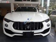 Cần bán xe Maserati Levante năm sản xuất 2017, màu trắng, xe nhập giá 5 tỷ 300 tr tại Hà Nội