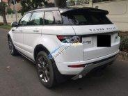 Bán LandRover Range Rover Evoque đời 2013, màu trắng, nhập khẩu   giá 1 tỷ 550 tr tại Tp.HCM