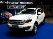 Bán xe Ford Everest Ambiente 2018 giá cực kỳ hấp dẫn giá 999 triệu tại An Giang