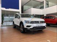 Cần bán xe Volkswagen Tiguan sản xuất 2018, màu trắng, xe nhập giá 1 tỷ 729 tr tại Hà Nội