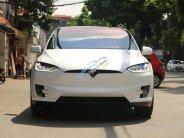 Bán Tesla X P100D đời 2018, màu trắng, nhập khẩu giá 9 tỷ 330 tr tại Hà Nội