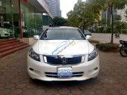 Cần bán Honda Accord năm sản xuất 2010, màu trắng, nhập khẩu, 565 triệu giá 565 triệu tại Hà Nội