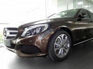 Cần bán Mercedes C200 sản xuất năm 2018, màu nâu giá 1 tỷ 489 tr tại Tp.HCM