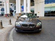 Bán BMW 5 Series 520i năm 2013, màu nâu, nhập khẩu giá 1 tỷ 195 tr tại Hà Nội