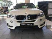 Bán xe BMW X5 giá tốt, giao xe ngay, hỗ trợ trả góp giá 3 tỷ 599 tr tại Tp.HCM