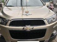 bán xe Chevrolet Captiva 2015 số sàn màu Vàng cát  giá 468 triệu tại Tp.HCM