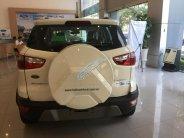 Ford EcoSport - tặng bảo hiểm thân vỏ tặng phụ kiện đi kèm giá 605 triệu tại Hà Nội