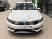 Bán xe Volkswagen Passat 2017, màu trắng, xe nhập, có sẳn giao ngay giá 1 tỷ 400 tr tại Khánh Hòa
