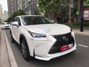 Bán NX200T sản xuất 2016, xe đẹp đi ít, cam kết chất lượng bao kiểm tra hãng giá 2 tỷ 250 tr tại Tp.HCM