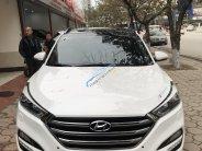 Bán xe Hyundai Tucson 1.6 Tubor sản xuất 2017, màu trắng, biển TP giá 955 triệu tại Hà Nội