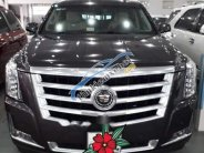 Bán Cadillac Escalade AT sản xuất năm 2015, xe nhập Mỹ giá 5 tỷ 500 tr tại Tp.HCM