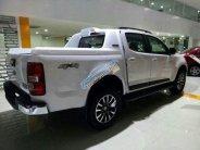 Bán ô tô Chevrolet Colorado 2019, màu trắng, nhập khẩu nguyên chiếc giá 624 triệu tại Đồng Nai
