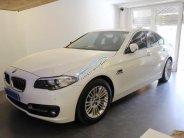 Bán xe BMW 520i SX 2014, đi 12000km. Xe chính chủ giá 1 tỷ 380 tr tại Tp.HCM