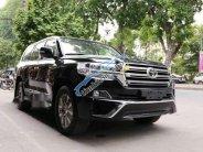 Bán ô tô Toyota Land Cruiser VX 4.6 V8 đời 2019, màu đen, nhập khẩu nguyên chiếc giá 3 tỷ 983 tr tại Tp.HCM