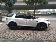 Cần bán LandRover Discovery Sport HSE Luxury năm sản xuất 2015, nhập khẩu giá 2 tỷ 340 tr tại Hà Nội