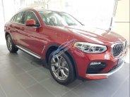 Bán BMW X4 xDrive 20i năm sản xuất 2019, màu đỏ, nhập khẩu  giá 2 tỷ 959 tr tại Tp.HCM