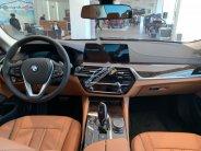 Bán BMW 5 Series 520i năm 2019, màu xanh lam, nhập khẩu nguyên chiếc giá 3 tỷ 69 tr tại Tp.HCM
