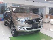 Bán xe Ford Everest Titanium sản xuất 2019, màu nâu, xe nhập giá 1 tỷ 177 tr tại Hà Nội