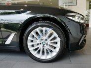 Bán BMW 5 Series 530i Luxury sản xuất 2019, màu vàng, xe nhập giá 3 tỷ 69 tr tại Tp.HCM