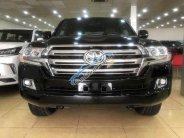 Bán ô tô Toyota Land Cruiser 5.7 Mỹ đời 2019, màu đen, nhập khẩu nguyên chiếc giá 7 tỷ 999 tr tại Hà Nội
