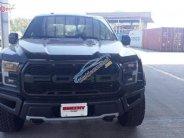 Cần bán xe Ford F 150 Raptor năm sản xuất 2019, màu đen, xe nhập giá 4 tỷ 500 tr tại Tp.HCM