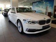 Bán ô tô BMW 5 Series đời 2019, màu trắng, nhập khẩu nguyên chiếc giá 3 tỷ 69 tr tại Bình Dương