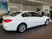 Bán BMW 5 Series 530i Luxury Line 2018, màu trắng, nhập khẩu, mới 100% giá 3 tỷ 69 tr tại Bình Dương