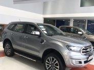 Mua xe Ford Everest Titanium 4x2 giảm tiền mặt lên đến 65tr giá 1 tỷ 177 tr tại Tp.HCM