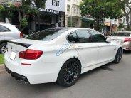 Bán BMW 5 Series 528i đời 2010, màu trắng, nhập khẩu nguyên chiếc, 980tr giá 980 triệu tại Tp.HCM