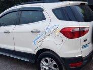 Cần bán xe Ford EcoSport sản xuất 2015, màu trắng, nhập khẩu giá 465 triệu tại Bình Dương