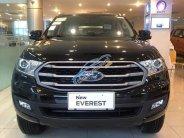 Bán Ford Everest năm sản xuất 2019, nhập khẩu nguyên chiếc, 930 triệu giá 930 triệu tại Hà Nội