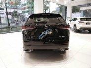 Bán xe Lexus NX 300 sản xuất 2019, màu đen, nhập khẩu giá 2 tỷ 510 tr tại Tp.HCM
