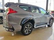 Cần bán xe Mitsubishi Pajero đời 2019, nhập khẩu  giá 980 triệu tại Cần Thơ