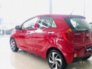 Cần bán Kia Morning 2019, màu đỏ, giá chỉ 393tr giá 393 triệu tại Bắc Ninh