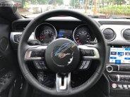 Bán xe Ford Mustang 2.3 EcoBoost Fastback sản xuất 2019, màu đỏ, nhập khẩu nguyên chiếc giá 3 tỷ 113 tr tại Hà Nội