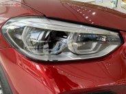 Bán ô tô BMW X4 xDrive20i sản xuất 2019, màu đỏ, nhập khẩu giá 1 tỷ 619 tr tại Tp.HCM